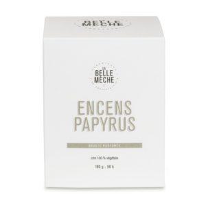 Bougie parfumée Encens Papyrus – La Belle Mèche